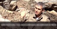 PKK'dan Milliyetçi muhafazakar vatandaşlara hakaret!