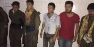 PKK'lı diye yakalanan 6 genç serbest bırakıldı!