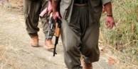 PKK'lılar bakın hangi operasyonda yakalandı!