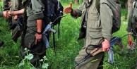 PKK'lıların olay telsiz konuşmaları!