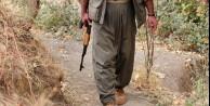 Çatışmada 3 PKK'lı öldürüldü