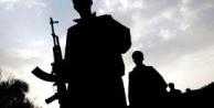 Şanlıurfa'da bir terörist yakalandı