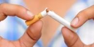 Sigarada kansere yol açan 81 neden var