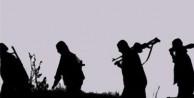 Teröristlere erzak taşıyan hainler gözaltına alındı