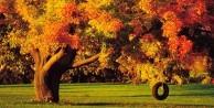 Sonbaharda sık görülen 5 hastalık