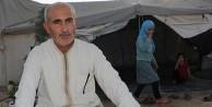 Suriyeli sığınmacılar Türkiye'den memnun