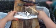 Tahta çubuklarla balık temizledi!