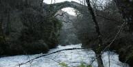 Tarihî 'Geyik Köprüsü' keşfedilmeyi bekliyor