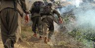 Terör örgütü PKK o mahalleye saldırıya geçti