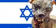 Terörist İsrail askerleri, Filistinlilere saldırdı: 10 yaralı