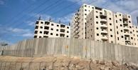 Yahudi yerleşimciler 300 zeytin fidanını söktü