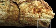 Yüz binlerce yıllık gizem çözüldü! - FOTO