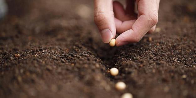 200 ülkeye yerli tohum ihraç ediyoruz