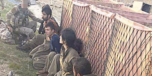 230 PKK'lı terörist etkisiz hale getirildi