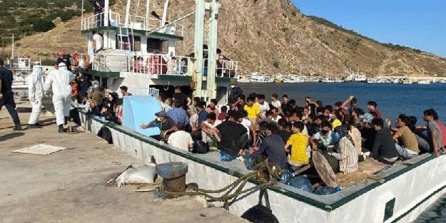 231 düzensiz göçmen böyle yakalandı