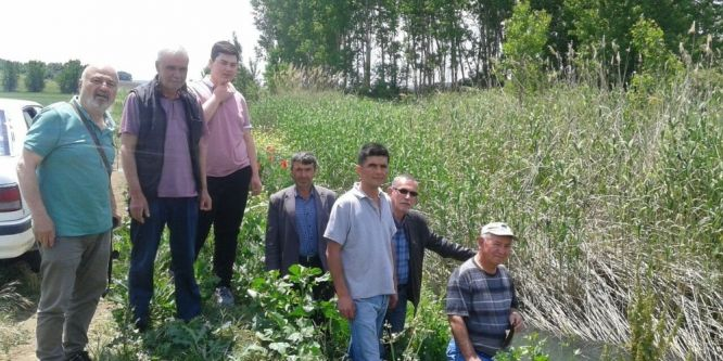Çiftçi dere kirliliği sebebiyle sulama yapamıyor