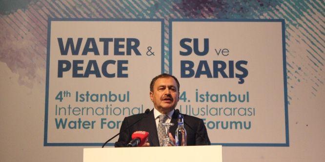 Bakan Eroğlu: Batı sadece konuşuyor