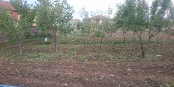 Niğde'de tarım arazilerini dolu vurdu