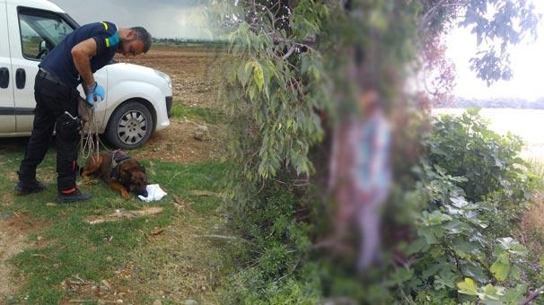 Adana'da kayıp şahsın cesedini iz köpeği buldu