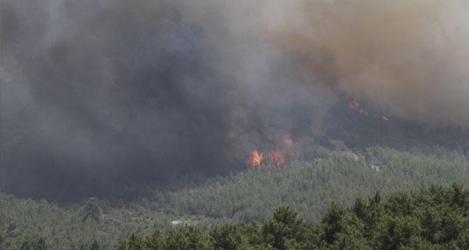 Adrasan'da çıkan yangın Çıralı ve Olimpos'u da korkutuyor