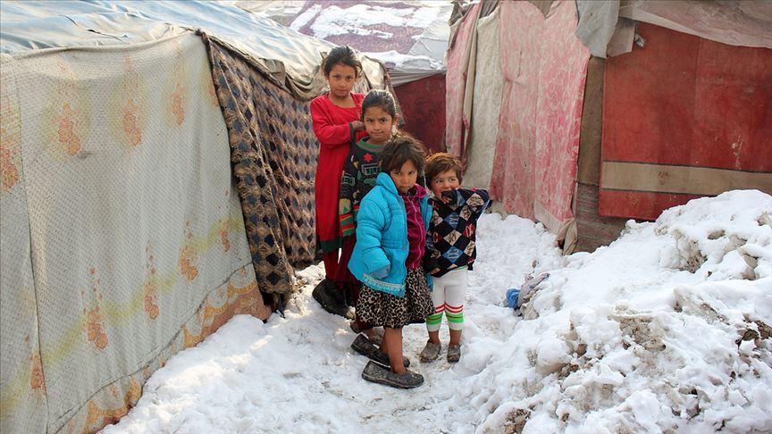 Afganistan'daki sığınmacılar zor şartlar altında yaşıyor
