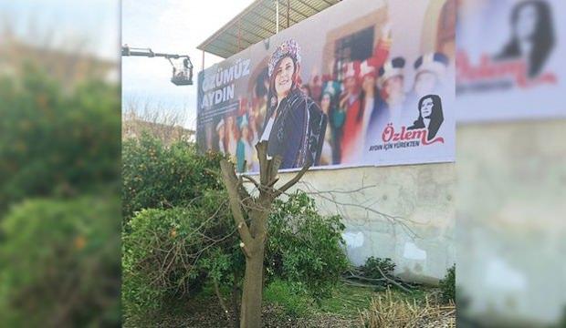 CHP'li başkan afişi görünsün diye ağaçları biçtirdi!