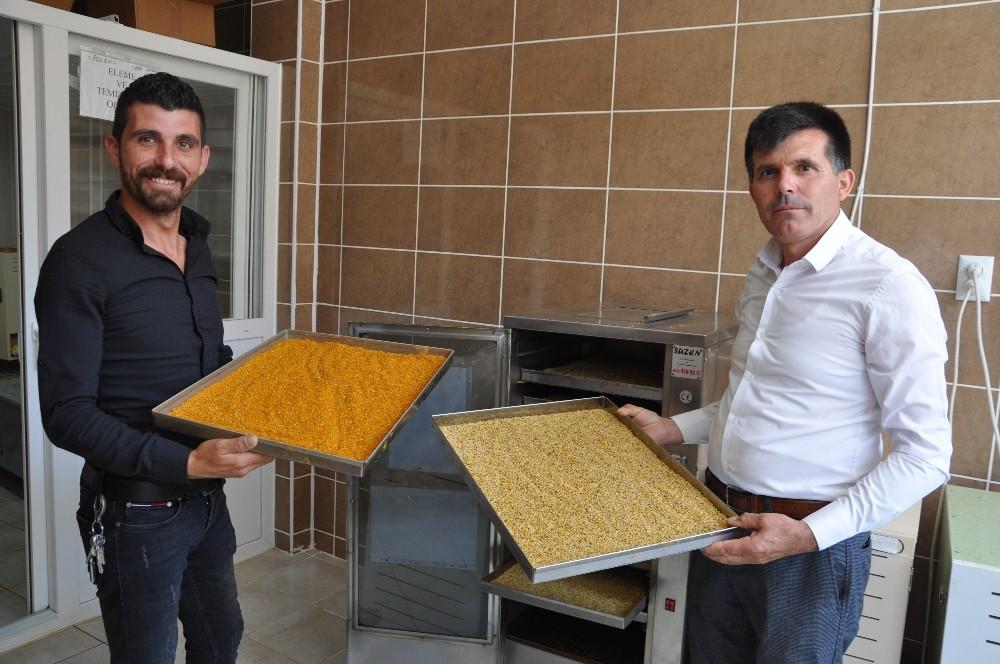 Afyonkarahisar Taşoluk'tan Avrupa'ya polen ihracatı