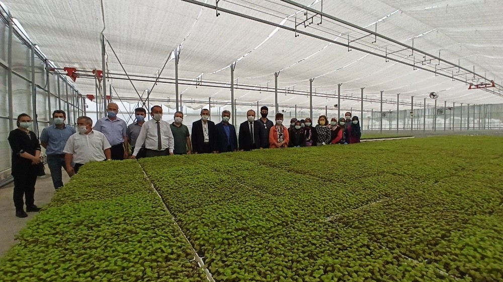 Afyonkarahisar'a kurulacak olan Tıbbi Aromatik Bitkiler Bahçesi ve Üretim Merkezi için Çorum'da inceleme