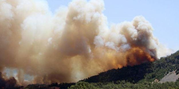 Ağrı Dağı eteklerinde örtü yangını! 200 hektarlık alan zarar gördü