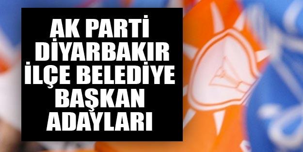 AK Parti Diyarbakır ilçe belediye başkan adayları 2019