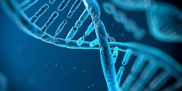 Altıncı hisle ilgili açıklama: O his, aslında mutasyonlu bir gen