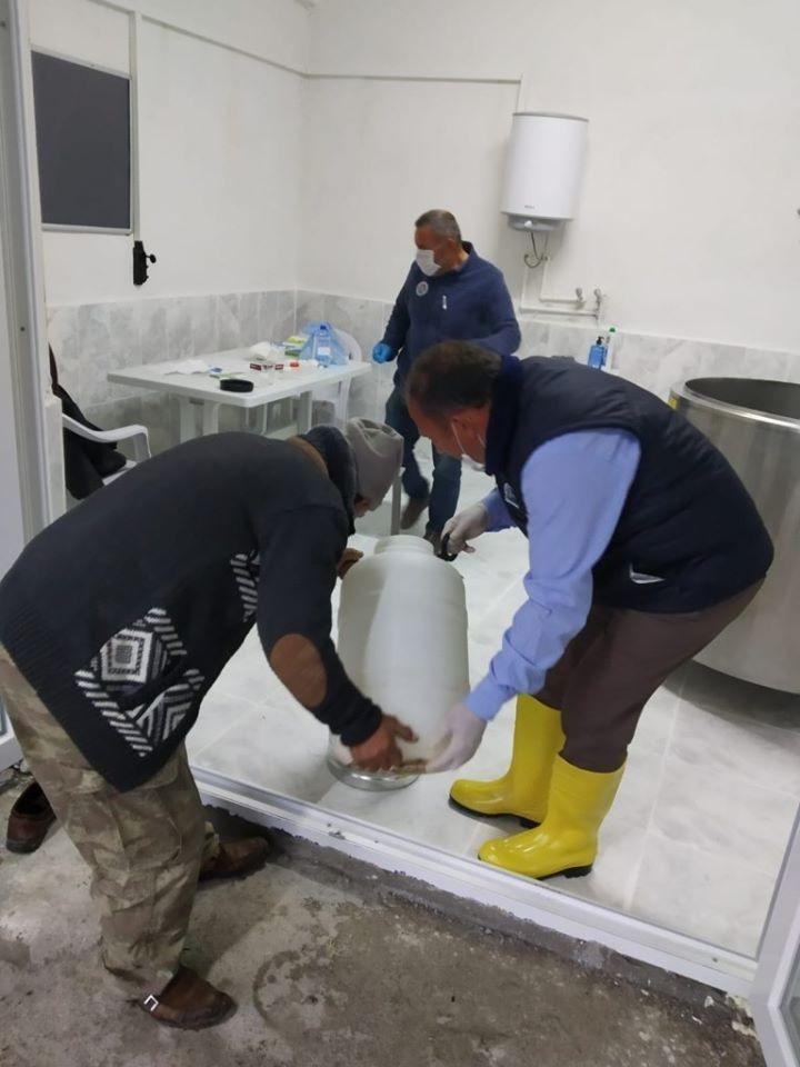 Amasya'da süt evleri çoğalıyor