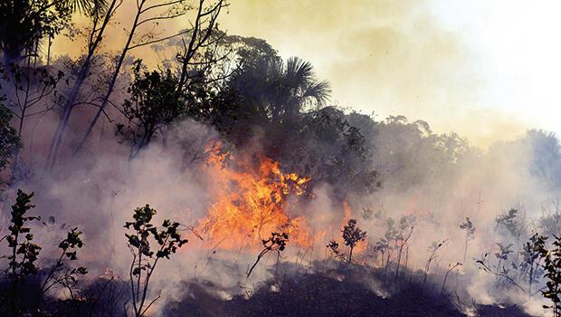 Amazonlar için koruma sözleşmesi