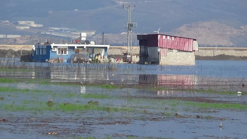 Amik Ovası'nda evler ve tarım arazileri sular altında kaldı