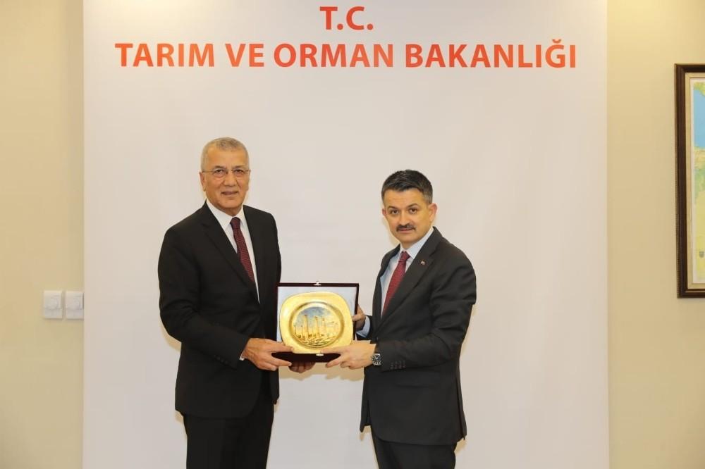 Ankara'ya 5 dosyayla giden Tarhan, destek sözüyle döndü
