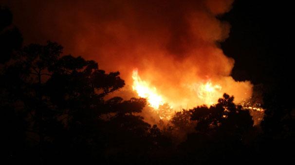 Antalya'nın Kemer ilçesinde Milli Park'ta korkutan yangın!