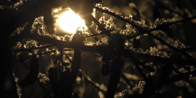 Ardahan'da kar, kartpostallık görüntüler oluşturdu