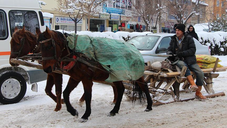 Atlı kızaklar yolda