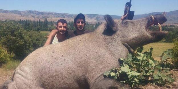 Avcılar vurdu! Tam 350 kilo