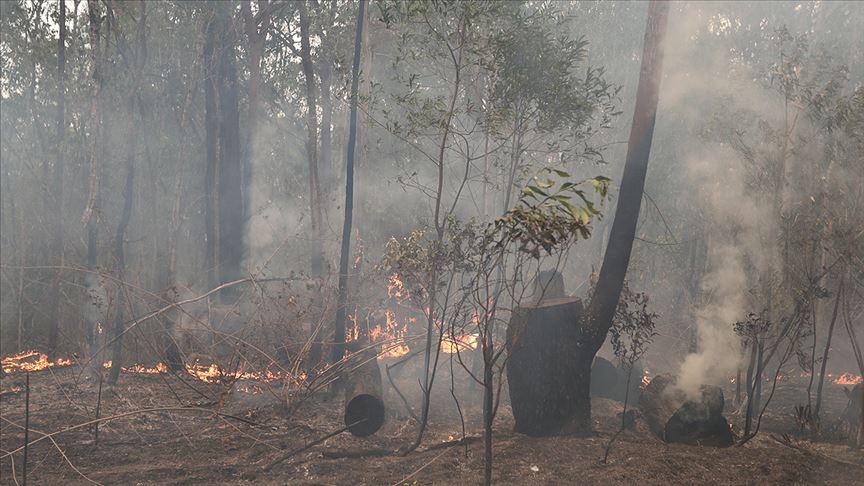 Avustralya'daki yangınlar nedeniyle üç eyalette daha alarm verildi
