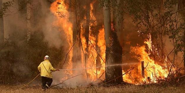 Avustralya'daki yangınlarda