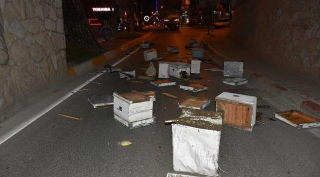 Aydın'da kamyonun kasası köprüye takıldı, arı kovanları yola saçıldı