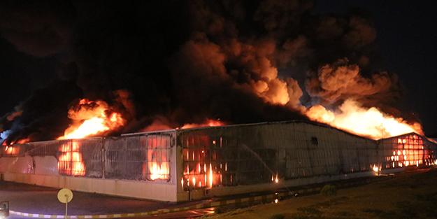 Aydın'da yangın! Olaya müdahale ediliyor