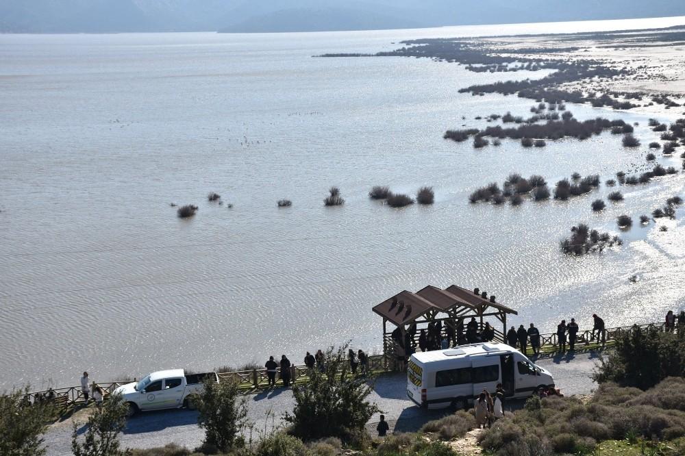 Bafa Gölü'nde kuş gözlemi etkinliği yapıldı