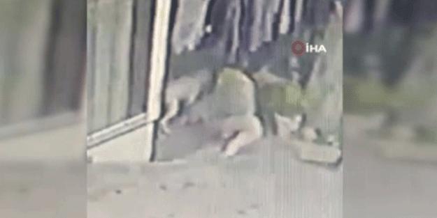 16 yaşındaki kıza pitbullar saldırdı! O anlar böyle görüntülendi