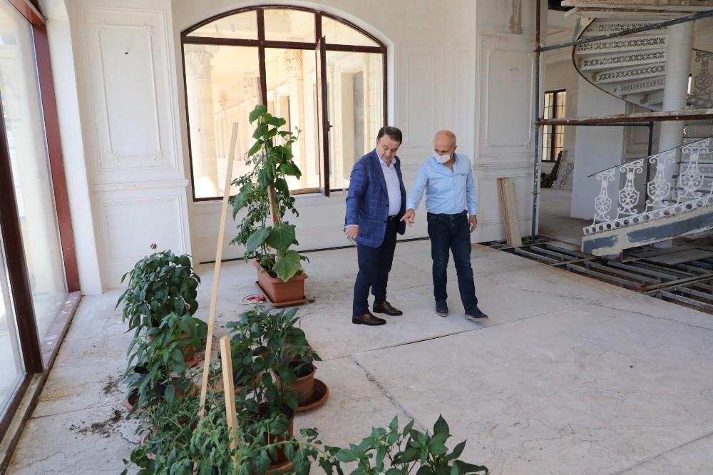 Başkan Akgün makam balkonunda organik meyve ve sebze yetiştiriyor