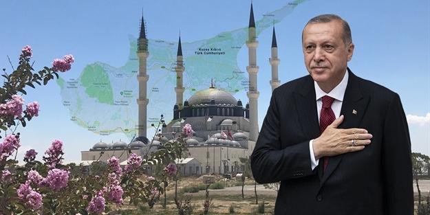 Başkan Erdoğan'dan Rumları çıldırtan hamle!