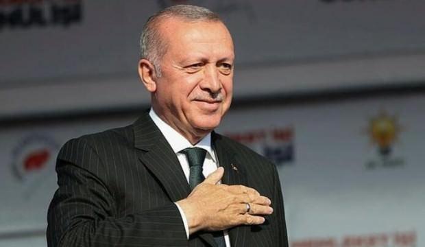 Başkan Erdoğan'dan Van kedili