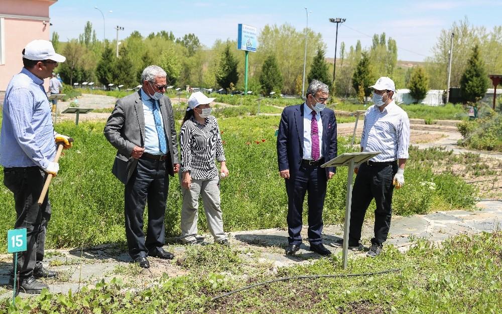 Başkan Işık, Hekim Sinan Tıbbi Bitkiler Araştırma Merkezi'ni ziyaret etti