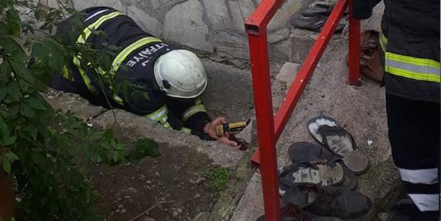 Beton boruya sıkışan yavru köpekler kurtarıldı